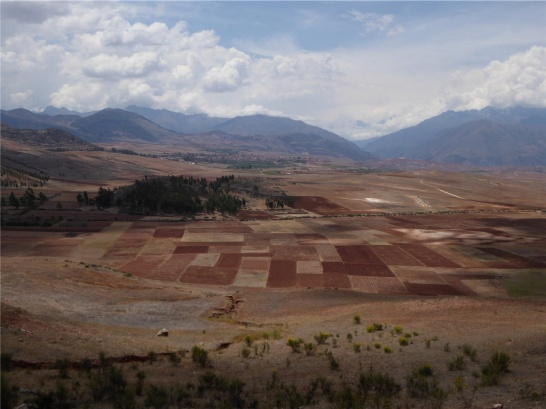 Enlargement: Agricultural area in Peru