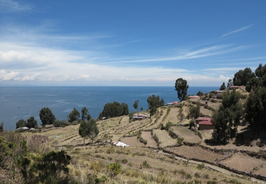 Enlargement: The picture shows fields in the foreground and Lake Titicaca in the background