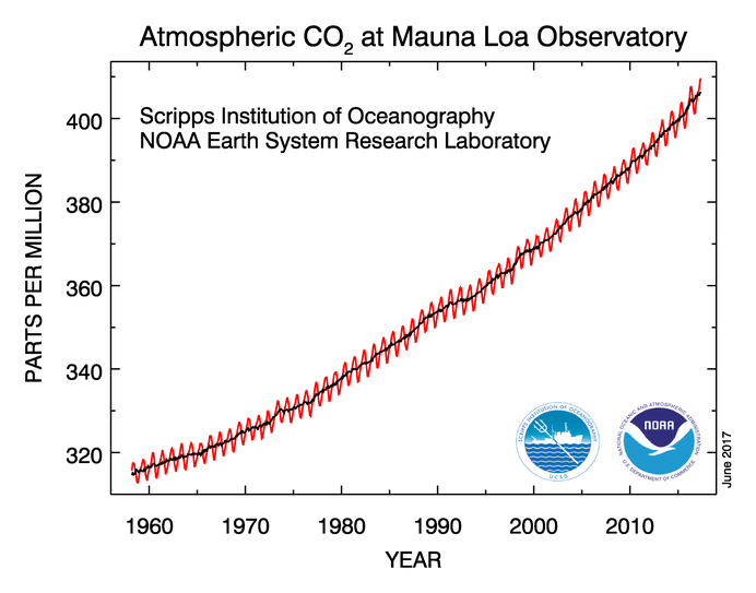 Enlargement: Atmospheric CO2 concentration measured at Mauna Loa Observatory, Hawaii